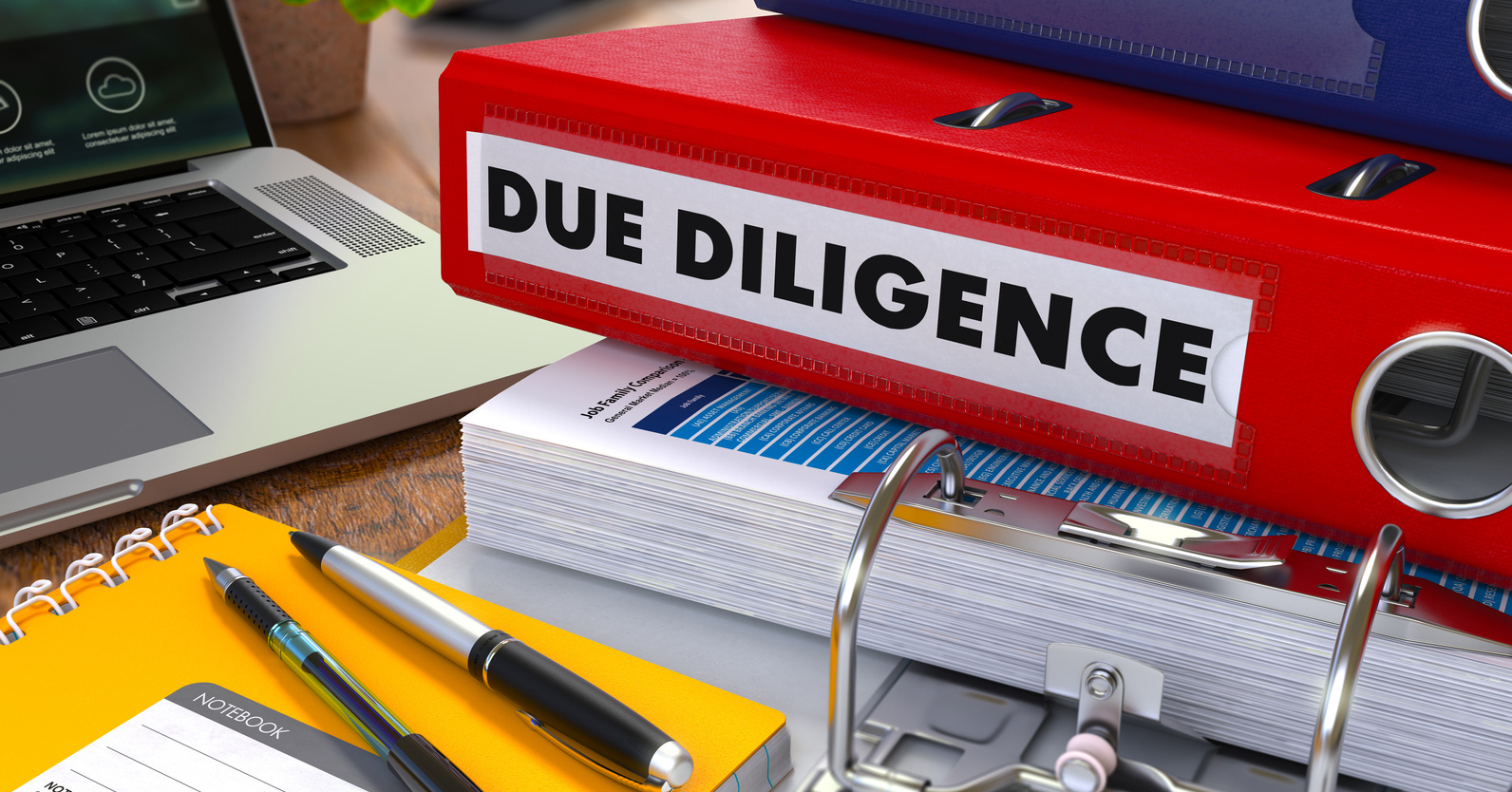 Red binder with inscription due diligence